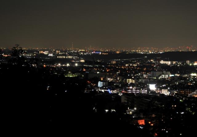 天覧山 夜景